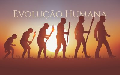 A Evolução Humana | Palácio dos Condes de Redondo, no átrio da Biblioteca |  de 1 de março a 30 de junho de 2020